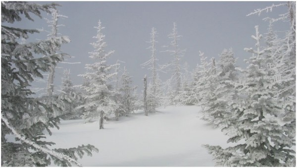 Foggy winter mountain Brume hivernale en montagne