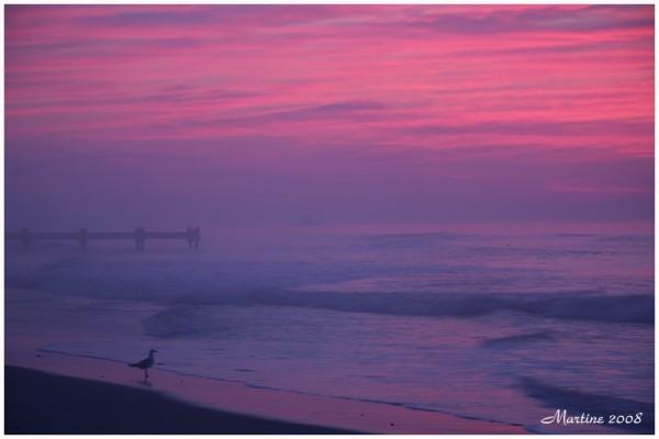 Avalon's sunrise 2 - Lever du soleil à Avalon 2