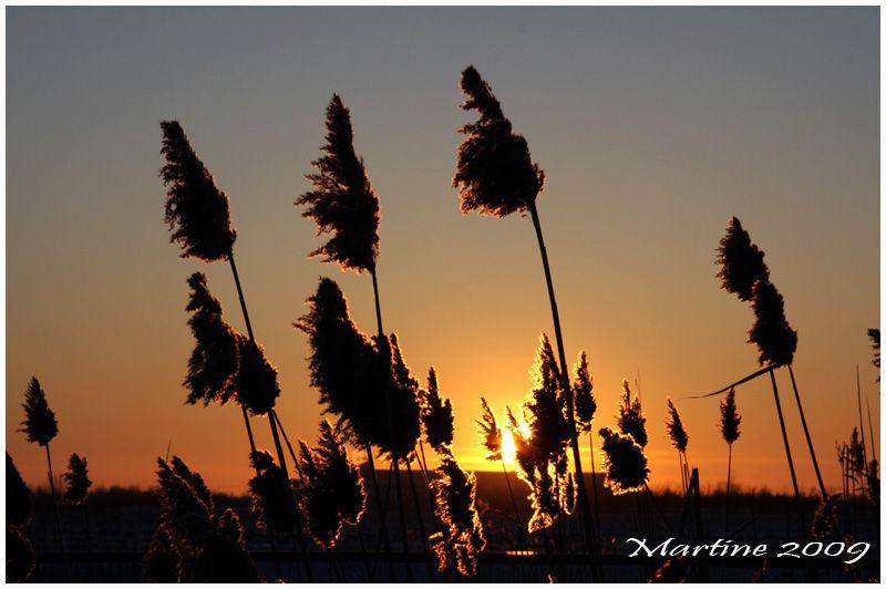 Sunset in St-Hubert