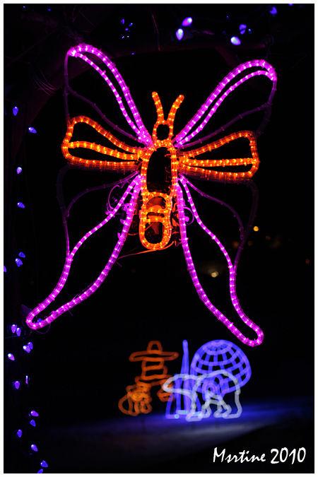 Festi-lumières Aquarium de Québec