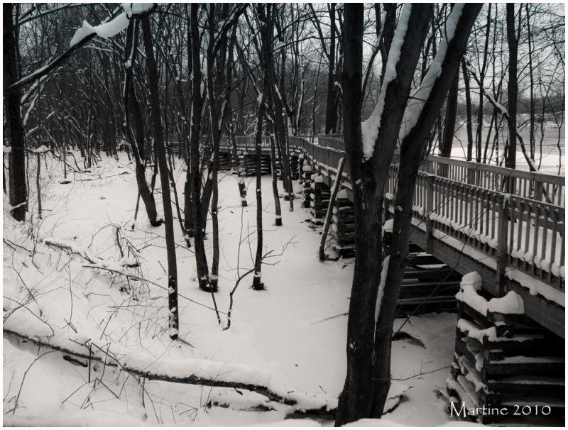 L'hiver est arrivé - The winter is there