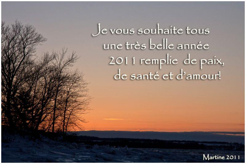 Happy New Year! Bonne année!