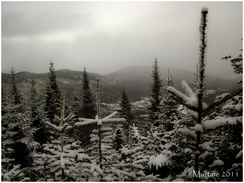 Winter landscape - Paysage d'hiver