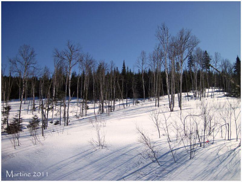 Winter... - Hiver...