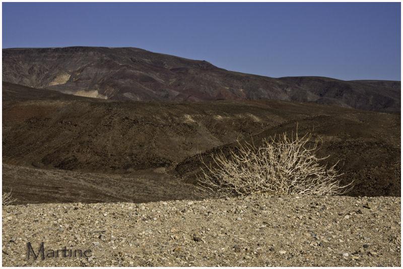 Other landscape - Autre paysage