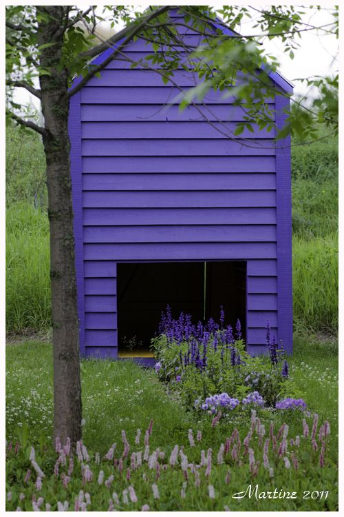 Every garden needs a shed and a lawn! 1