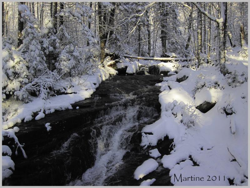 The winter's beauty - la beauté de l'hiver