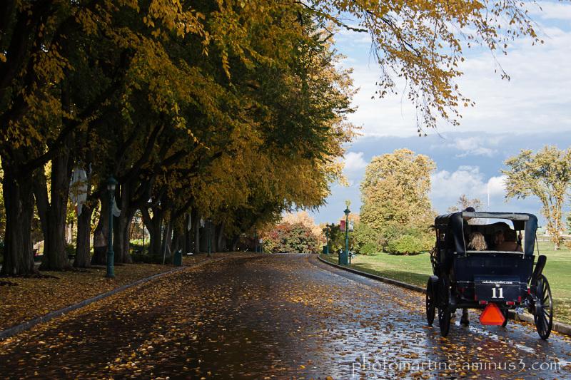 Randonnée d'automne...
