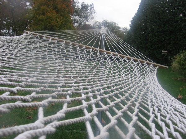 another hammock