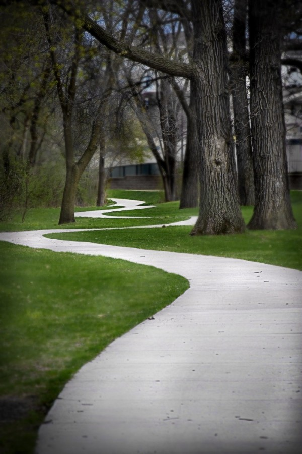Other Paths in Life