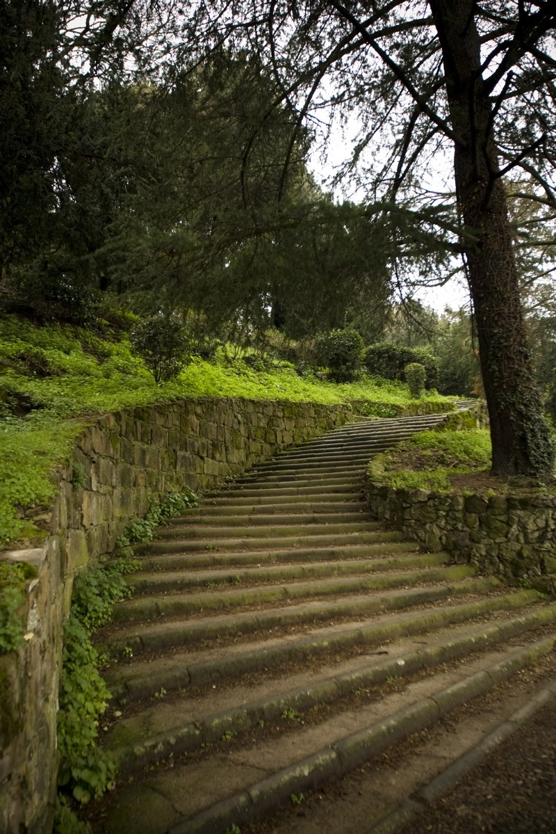 Steps in Florence