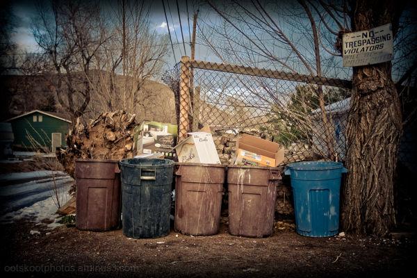 Backyard Trash 2