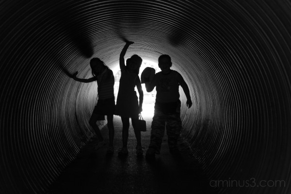 The Tunnel of Fun