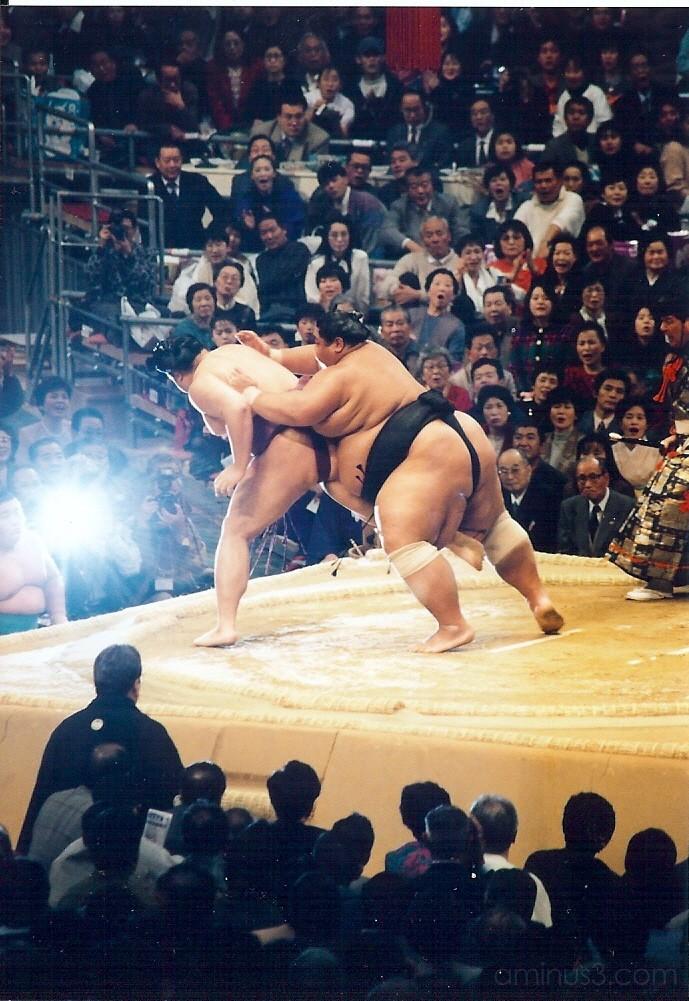 Osaka Sumo Basho 1995