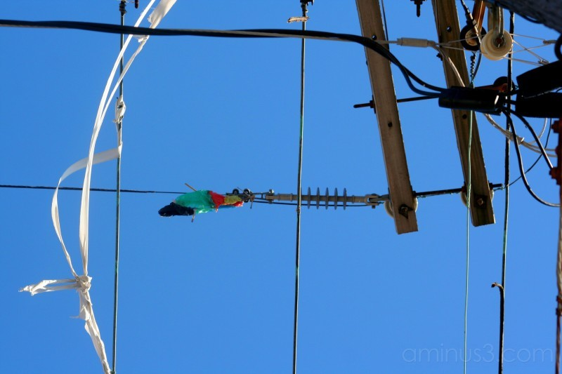 electrical wires and balloons
