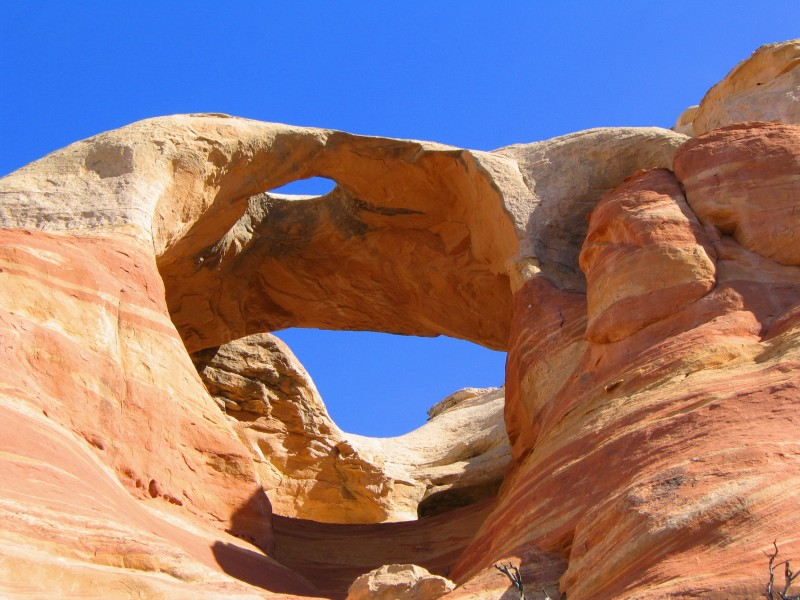 Skylight Arch