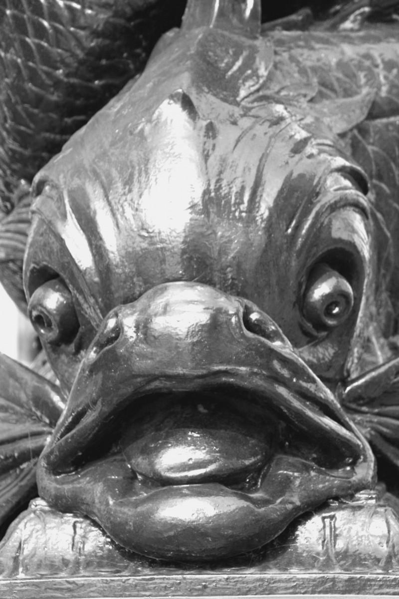 Fish London