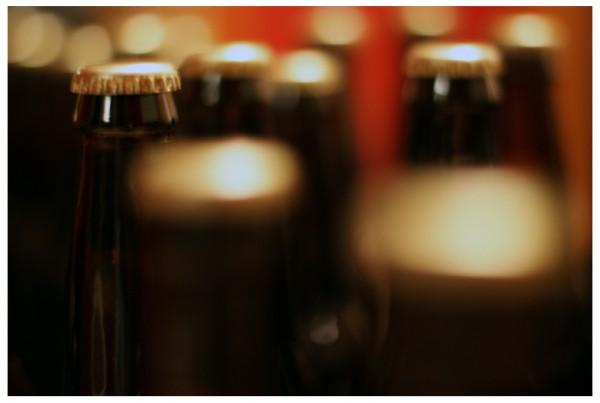 Beer Bottles Wint3r