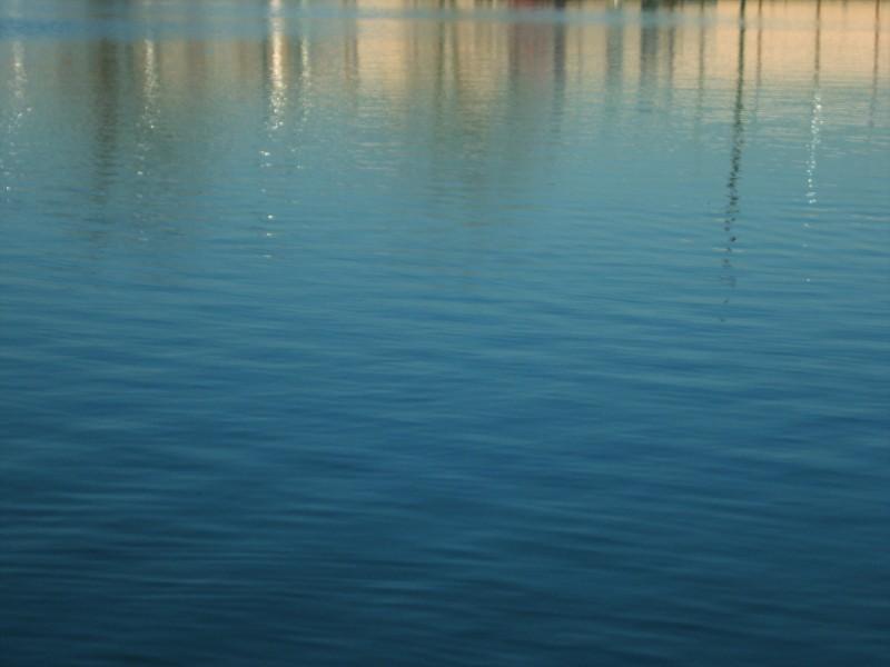 Submerged Suburb