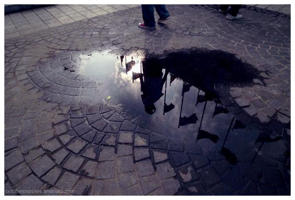 Elysian puddle
