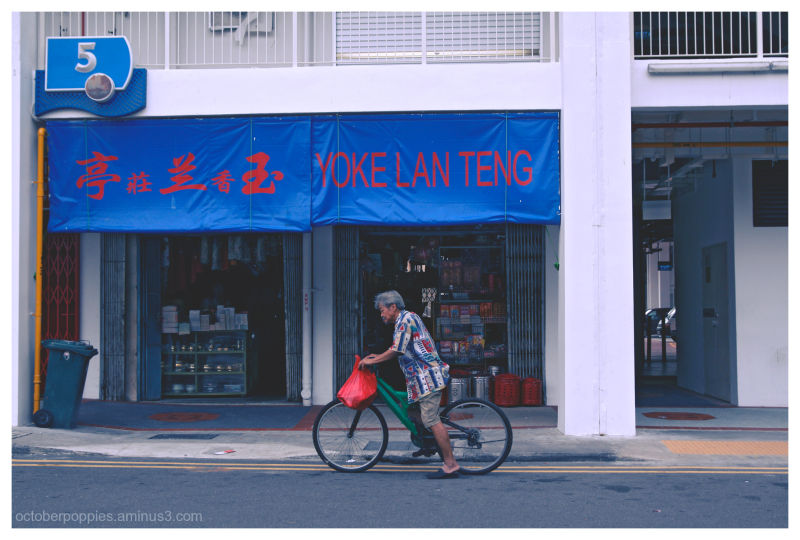 Pedalling Past the Jade Orchid Pavilion