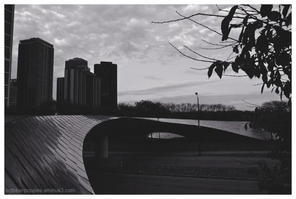 City Rims