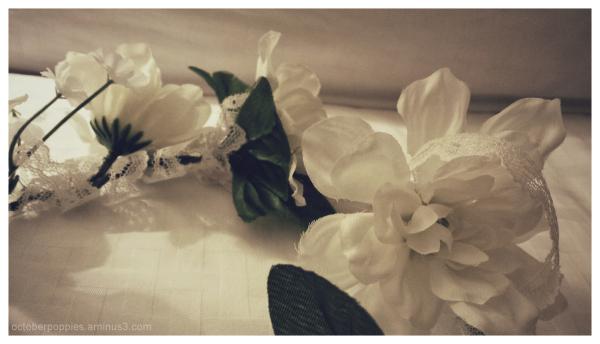 I should have got you (fake) flowers, 3