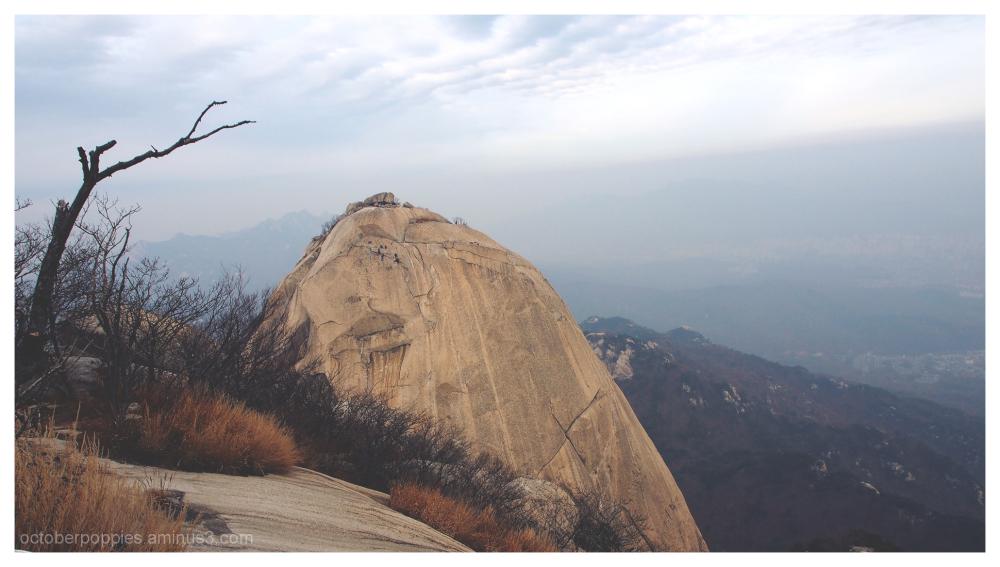 Neighboring Peak