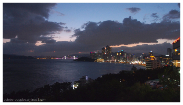 Pusan Nights