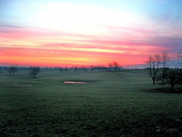 Bluegrass Sunrise