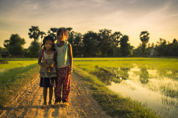 In Cambodian Fields
