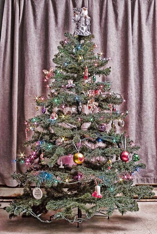 Pre-Santa Tree