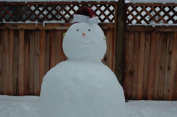 Eddie My snowman
