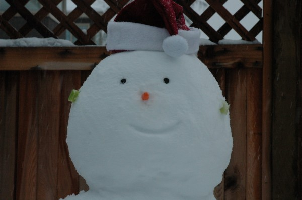 Close up portrait of Eddie, the snowman