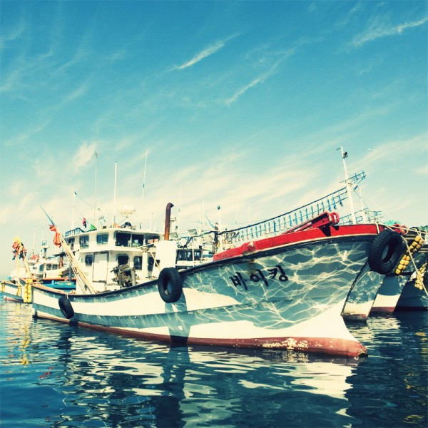 Boat, Jeju Harbor