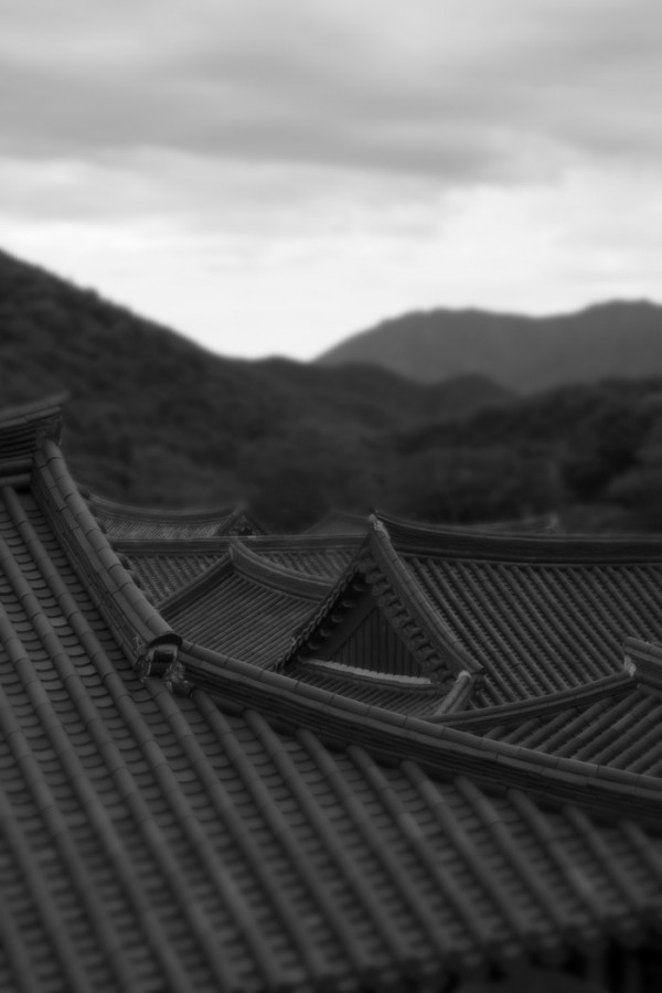 Temple roofs, Korea