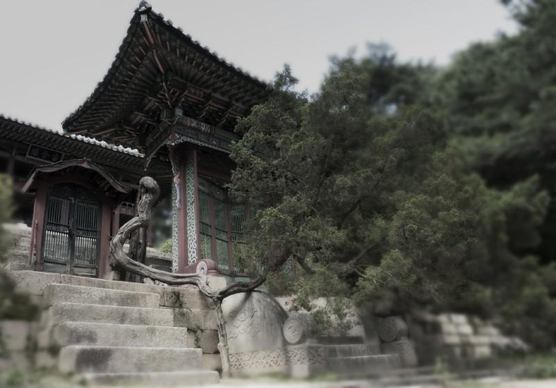 Shrine in the secret garden
