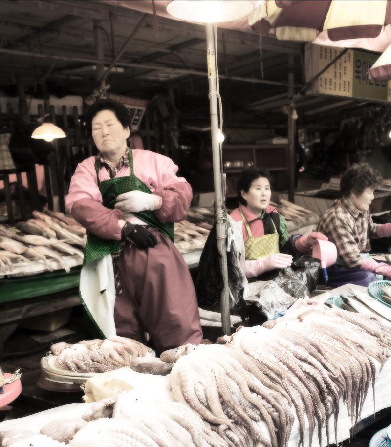 busan fish market korea aidan hammond