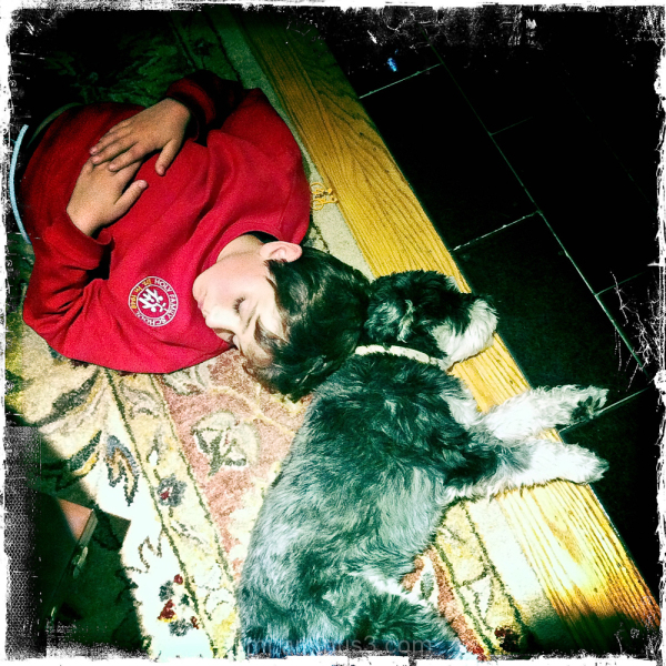 taking a nap with the dog in front of the fireplac