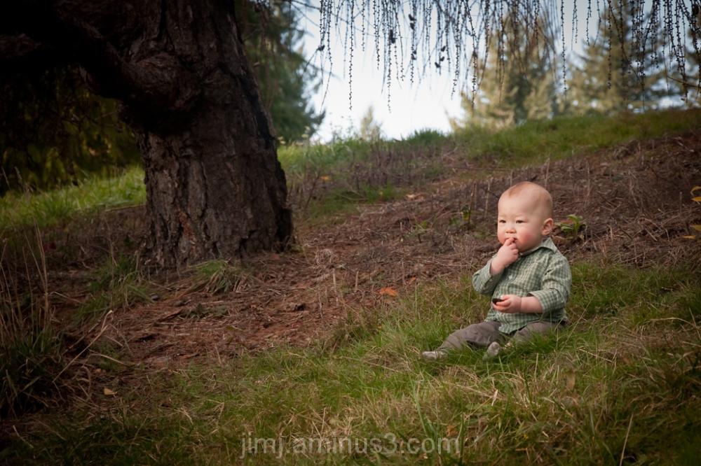 Small boy on a hillside