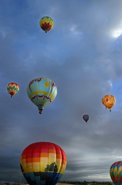 The Great Reno Balloon Races 3