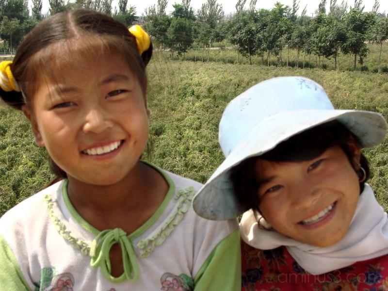 Children of the Goji Fields