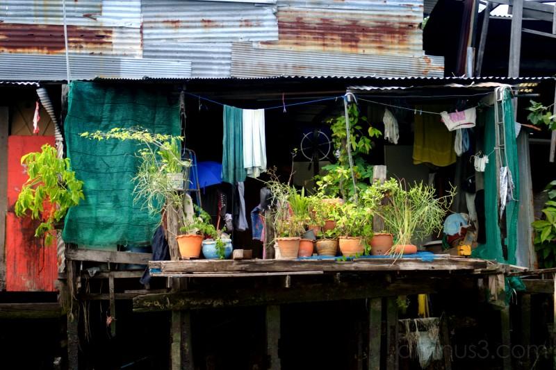 The Klongs of Bangkok - 2006
