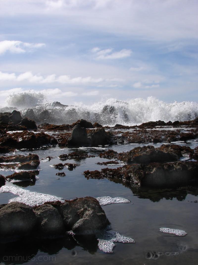 Pescadero IX