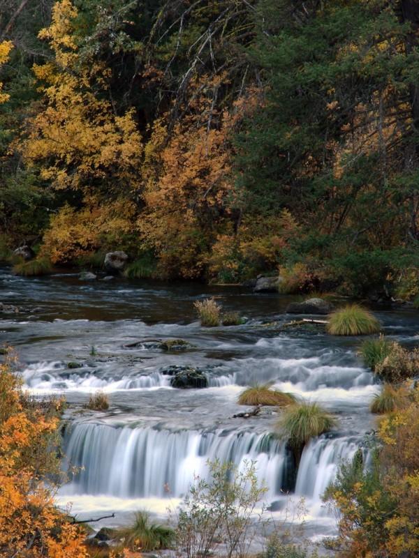 Burney Falls IV