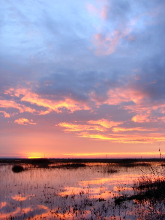 Sunrise at Yolo Wildlife Refuge