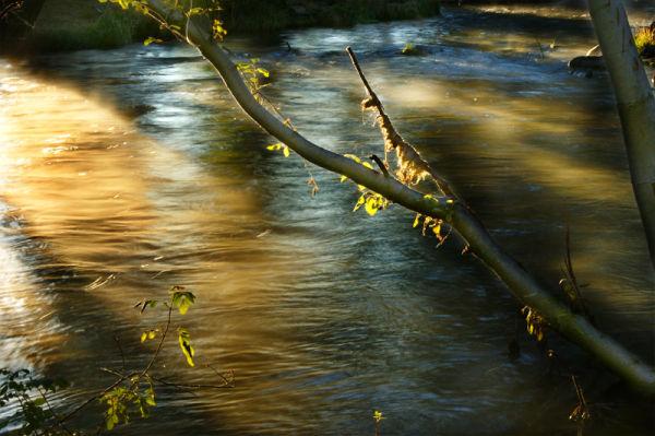 Hat Creek Runs Deep III