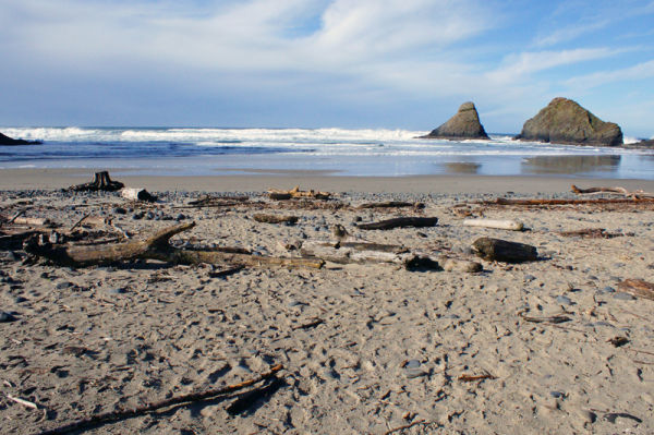 Beach - Central Oregon Coast