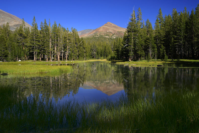 Tuolumne Meadows, Yosemite National Park