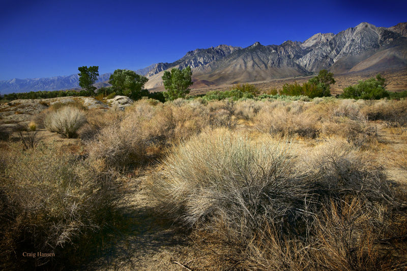 Owens Valley and the Eastern Sierra Nevada